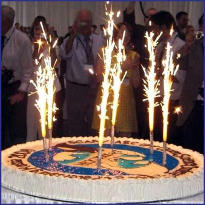 Image of Bottle Sparklers on a Birthday Cake